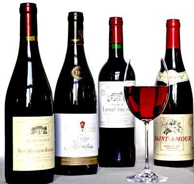The World of Wine: An Insider's Guide
