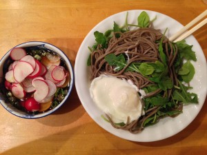 cold soba noodles with radishes, green onion, arugula, soba dipping sauce and poached egg